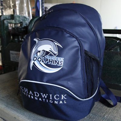 Chadwick Backpack dolphin